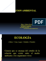 INTRO-01 gestion ambiental