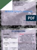 Ecotoxicologie,Daniela.pptx