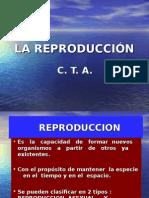 Clase Dere Producción2
