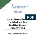 Melo Liliana EnsayoReflexivoCdeC