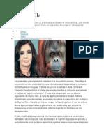 - Moral Animal Etica Gorila Fontevechia