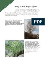 SanElijoLagoon.pdf