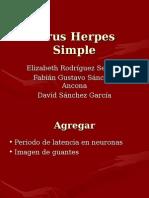 Virus Herpes Simple.ppt