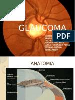 Glaucoma Grupo 1 2