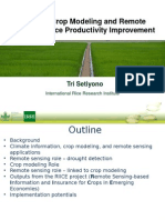 The Role of Crop Modeling and Remote Sensing in Rice Productivity Improvement