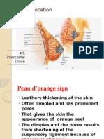 Anatomy Tutoring