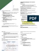 Sistema Digestivo Fisiologia