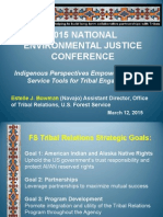 Indigenous Perspectives Empowered