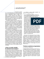 Posicion Anatomica