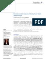 Socioeconomic Factor on Brain Development
