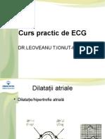 Curs Practic de ECG