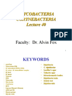 Mycobacteria.ppt