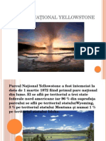 Parcul Național Yellowstone Powerpoint