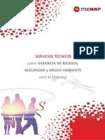 Manual_Servicios_Tecnicos_sobre Gerencia de riesgo, Seguridad y Medio ambiente-2010.pdf