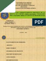 ESTUDIO DEL ENRIQUECIMIENTO PROTEICO DE LA MEZCLA DE COROBA (Attalea macrolepis), UTILIZANDO PIRA (Amaranthus dubius) EN DISTINTAS PROPORCIONES