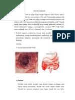 SGD 2 CROHN DISEASE NERS AYU fix.doc
