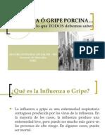 GripePorcina-28.04.09.ppt