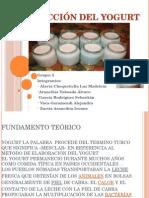 Proceso Del Yogurt Oficial