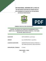 Control Forestal y de Fauna Silvestre Tingo Maria Soto Shareva Luis