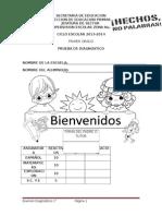 1o-diagnostico-2013