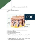 Laporan Tutorial 1 Anatomi Histologi Dan Fisiologi Kulit