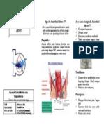 Leaflet Anorektal Abses
