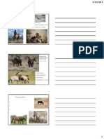 Wild Horse Behavior Handouts Posted