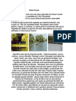 Delta Dunarii.doc