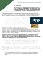 Prodieta.ro-acrilamida Pericolul Prajelilor