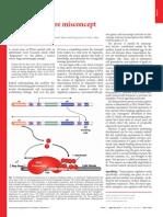 Epigenetic A