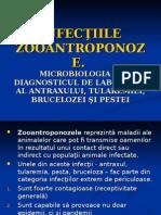 Zoonozele_07