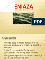 Teniaza 2003bb