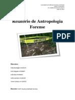 Relatório Antropologia