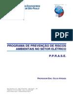 PPRA Elétrica.pdf