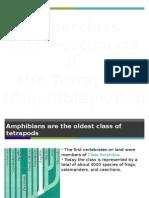 AP Biology Chapter 34 Presentation