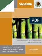 Programa Nacional de la Agroindustria  de la caña de azucar 2007-2012