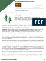 Consejos sobre diseño de folletos y volantes publicitarios _ Consejos para diseñar folletos y volantes publicitarios más efectivos que te ayudan a vender más
