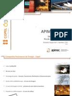 Descritivo Copel Telecom - APIMEC rj