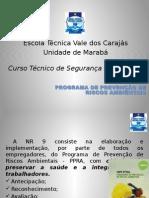 Programa de prevenção de riscos ambientais.pptx