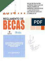 Reglamento de BECAS VP 100314