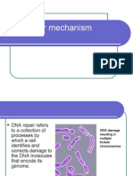 Dna repair mechanisms