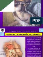 autoexamen-senos.ppt