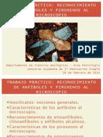 Reconocimiento de Anfiboles y Piroxenos en Corte Delgado UBA Libre