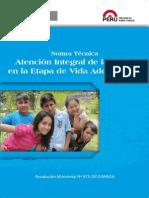 Norma Adolescente.pdf