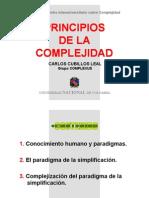 Principios de La Complejidad