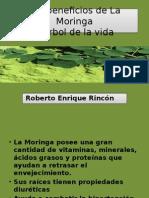 Los Beneficios de La Moringa