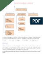 Unidad III Compuestos Organicos e Inorganicos