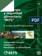 Bioenergia y Seguridad Alimentaria