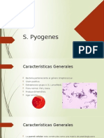 Microbiologia Clinica S. Pyogenes