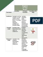 region of the brain table